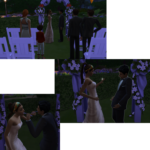 Chapitre 30: Mariage !