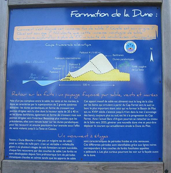 formation de la dune