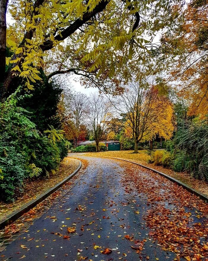Le parc Montsouris, la balade automnale idéale à Paris ?
