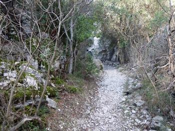 Le sentier au fond du vallon