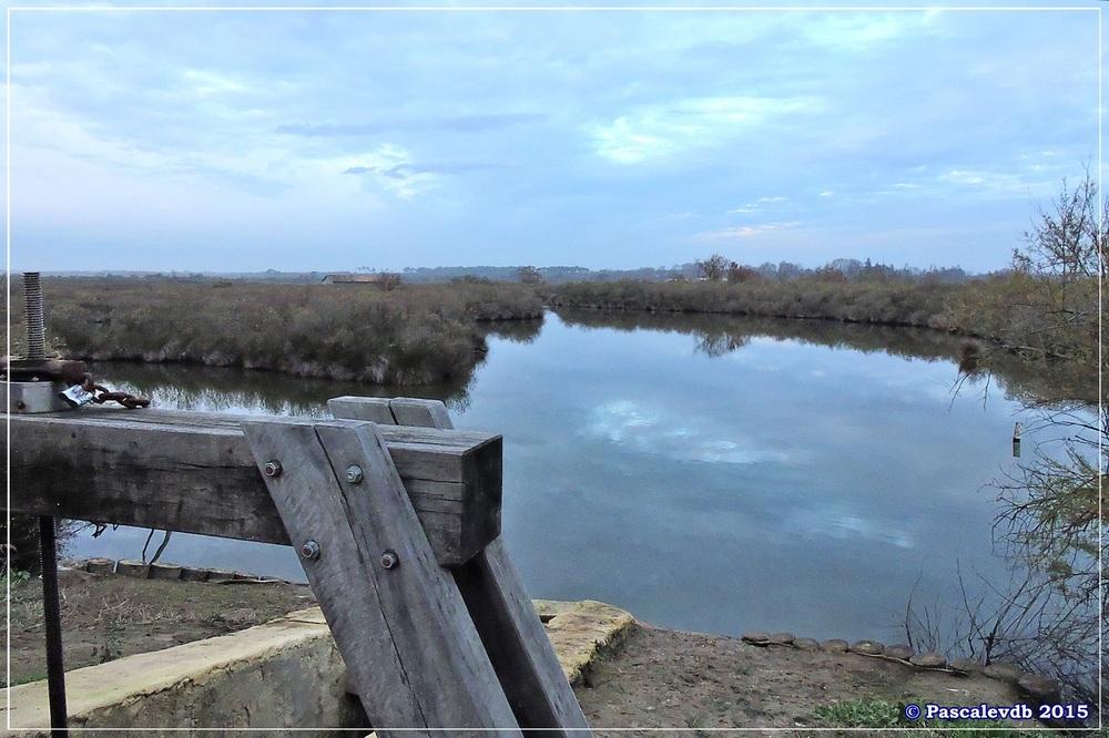 Tour du domaine de Graveyron - Décembre 2015 - 4/5