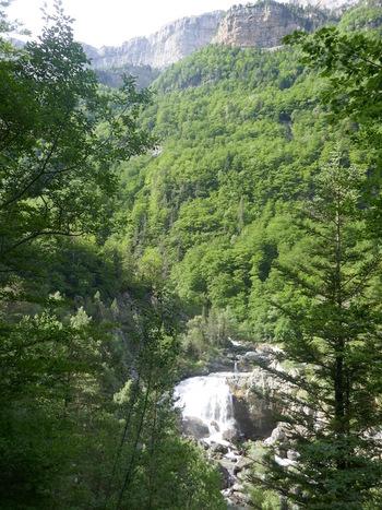 Les premières cascades