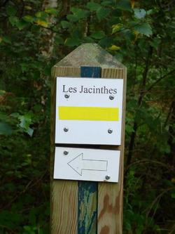 Le chemin des Jacinthes