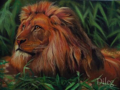 Le roi Lion (4ème étape et fin)