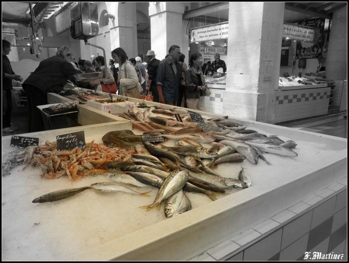 Beaucoup de poissons