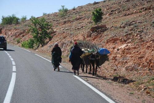 Là c'est l'âne qui est chargé