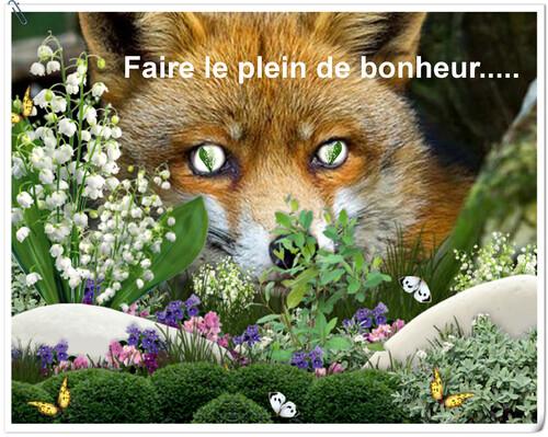 FAIRE LE PLEIN DE BONHEUR...
