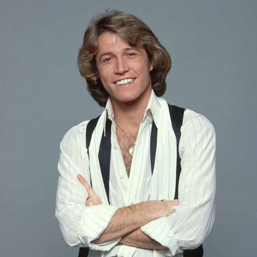 GIBB, Andy - I Just Want to be your Everything  (Romantique)