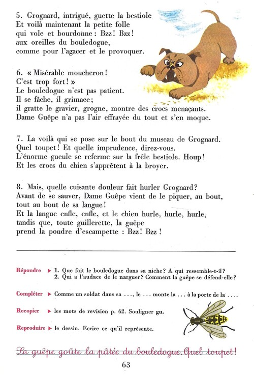 Guêpe et bouledogue
