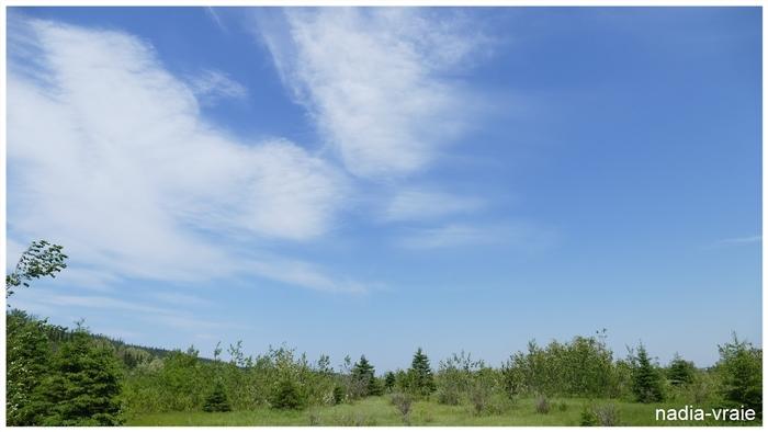 Le ciel, l'espace. (Défi du mois d'avril chez khanel3)