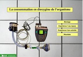 Chapitre 2: l'approvisionnement des organes en dioxygène