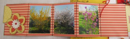 pages-de-scrap-0682-bis.jpg
