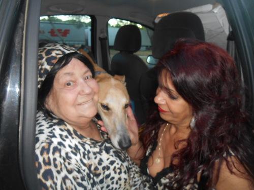 CAYETANO en route vers sa nouvelle famille d'accueil pour ADL