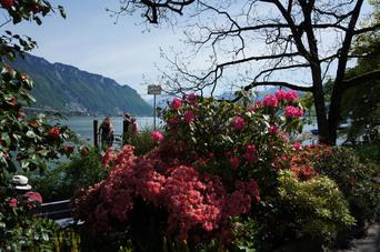 """Supercalifragilibalade"" à Montreux (Suisse)"