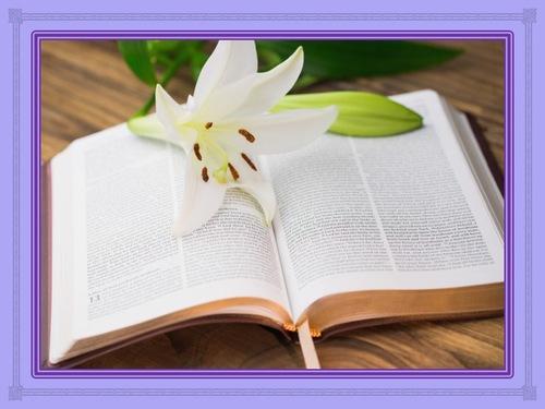 Jésus est la réponse que vous attendez