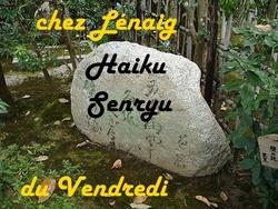 Le coucou du vendredi, haïku,senryû, la passion...