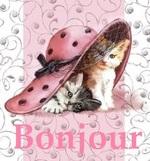 Cartonnettes - La Dame au chat !