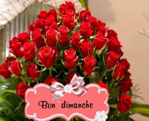 BON DIMANCHE !!!