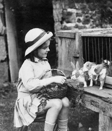 24 - Les enfants et leur lapin