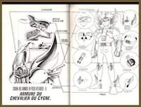 Cygne1