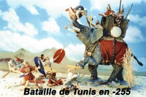 bataille-de-Tunis.jpg