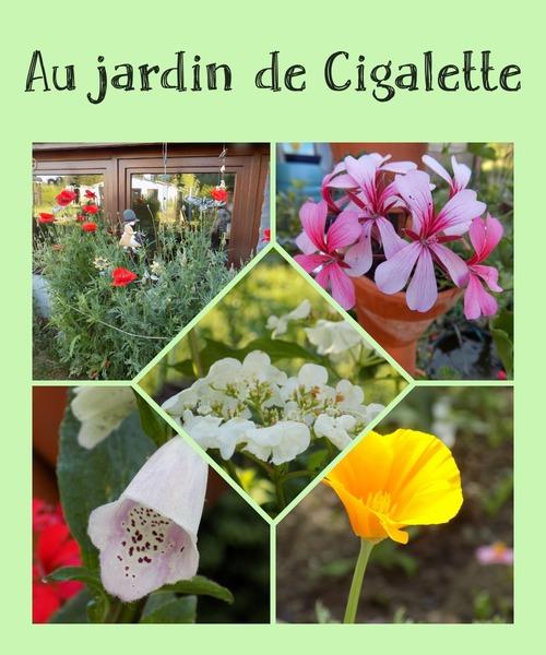 Au jardin de Cigalette