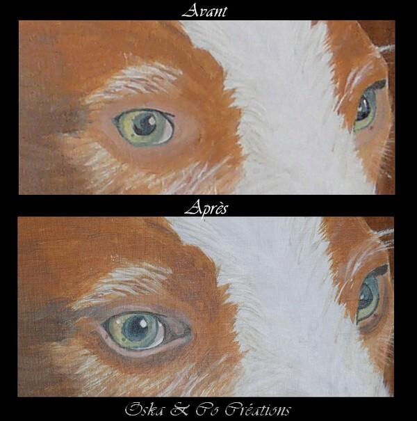 evolution-yeux.jpg