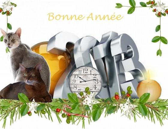BonneAnnee2013--1-.jpg