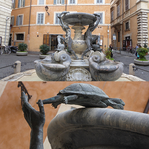 ÊTRE UNE TORTUE À ROME - 3