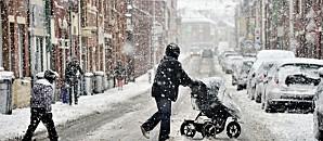 la-neige-sur-le-nord-de-la-france-le-5-mars-2012-10657098po.jpg