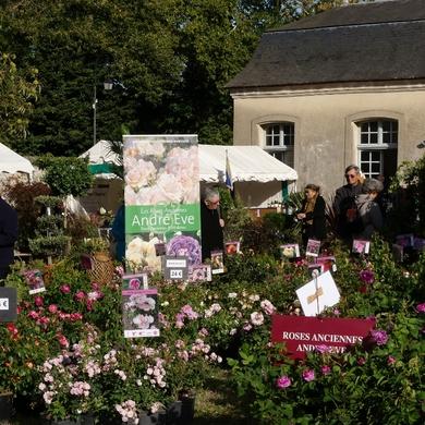 Journées des Plantes et Art du Jardin de Jossigny : retour sur l'édition 2018...