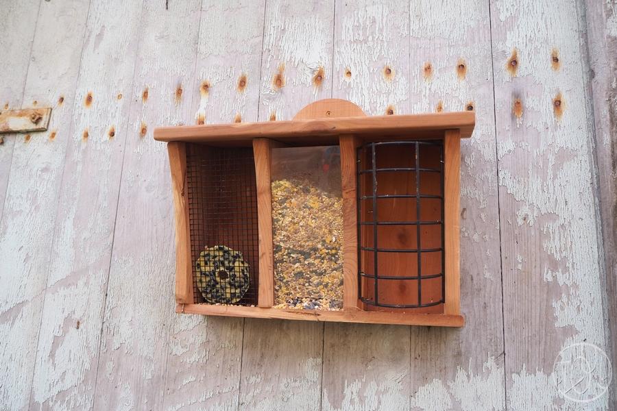 Ecolotruc n° 13 : Faire des boules de graisse pour les oiseaux