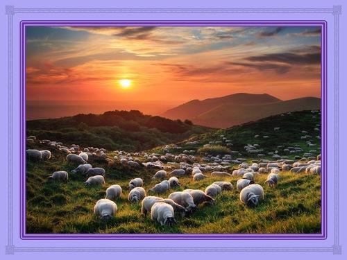 Commentaire du Psaume 23 (1 à 7)