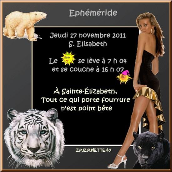 JEUDI-17-NOVEMBRE-2011-.jpg