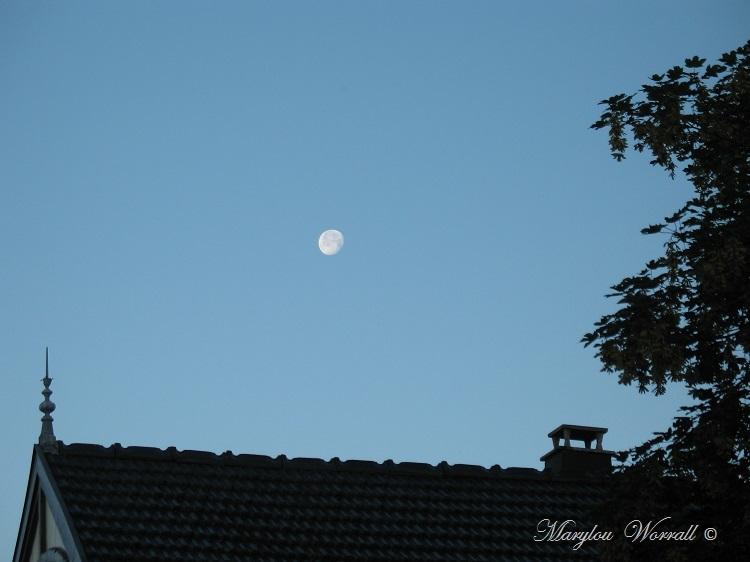 La lune au matin