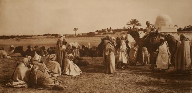 Scéne de marché aux bestiaux. Tunisie. 1900