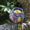 Culotte à pomme (Pois de Senteur)