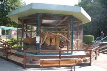 Zoo Saarbrücken 2012 043