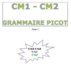 La grammaire au jour le jour de F. PICOT - année 2