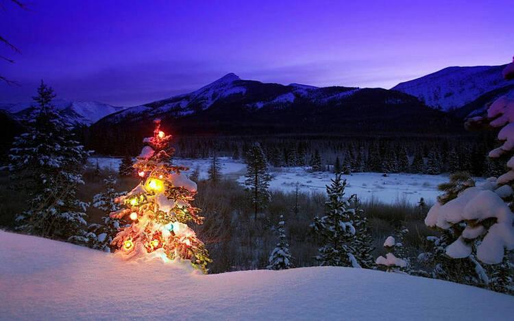 Concours de la photo du mois de décembre. (Concours de la photo du mois)