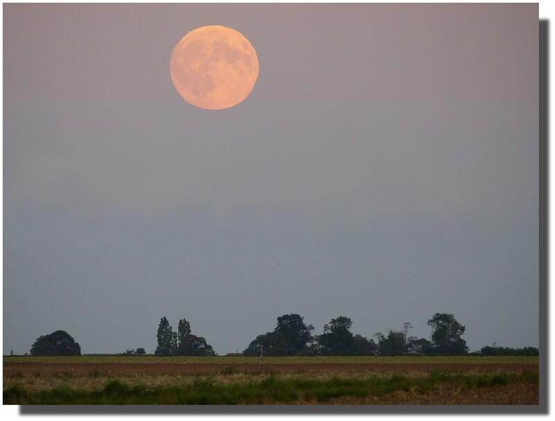 cette nuit je ne dormirai pas, je me coucherai avec la lune...