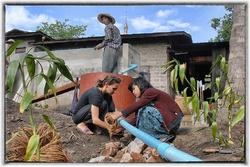 Filtre planté, compost, jardin, cuisinière bois