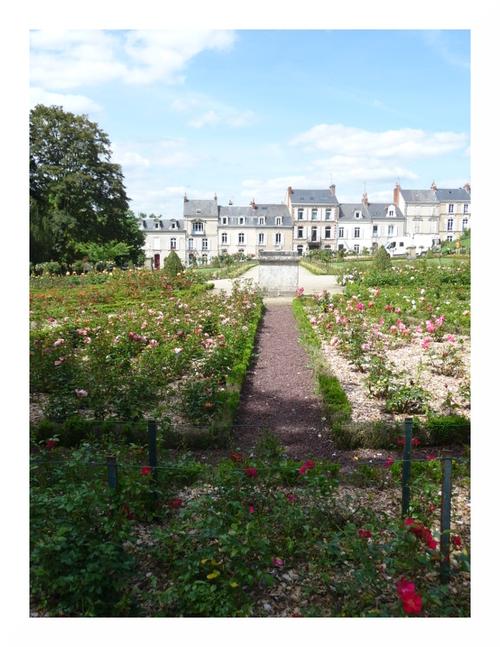 Le Jardin des Plantes du Mans