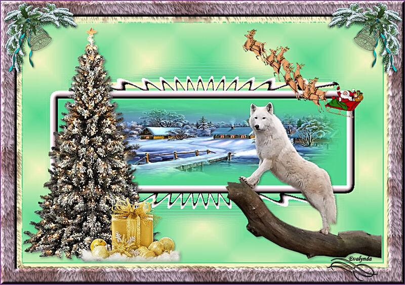 Noël sans Phoenix
