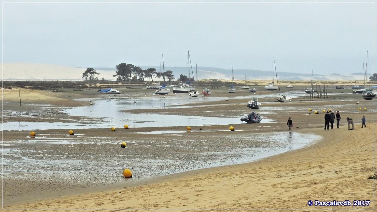 Traversée du Bassin entre Arcachon et le Cap Ferret - 6/14