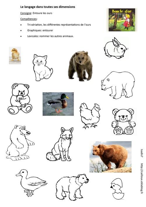 Retrouver les ours parmi les animaux