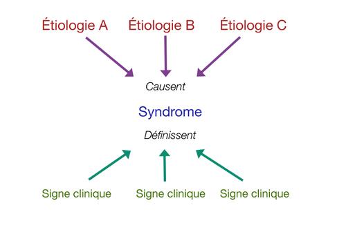 Étiologies, syndromes et symptômes