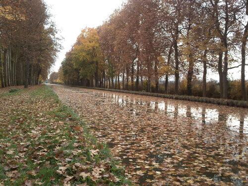 Le canal de la jonction, près de Nevers
