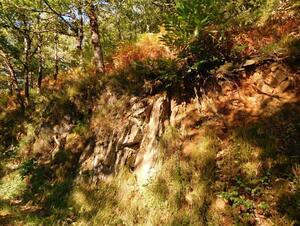 Estaing / Golinhac 16km