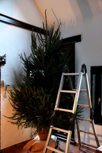 Xmas 2013 (5) : Xmas tree : Work in progress